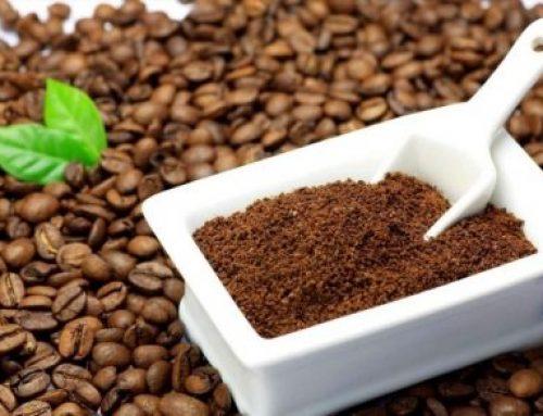 Uống cà phê nhân xanh có lợi gì cho sức khỏe ?